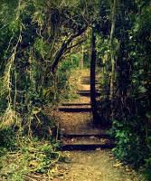 recensione libro il giardino segreto locanda dei libri recensione de quot il giardino segreto quot