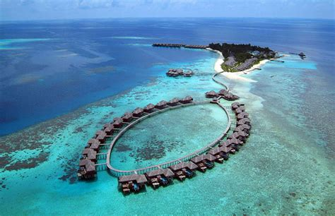 coco palm bodu hithi hotel  paradise  maldives decoholic