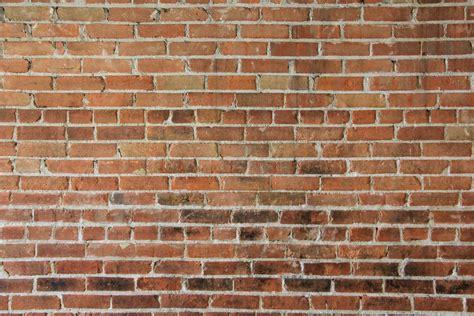 Free photo: Brick Texture Aged Material Wall Free