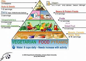 Dieta semi vegetariana pdf