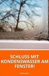 Fenster Putzen Im Winter : 5 tipps gegen kondenswasser am fenster fenster putzen tipps haushalts tipps und tipps ~ Watch28wear.com Haus und Dekorationen