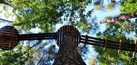 Pastaiga 8 metrus virs zemes - Valmierā atklāta piedzīvojumu taka kokos | Parka