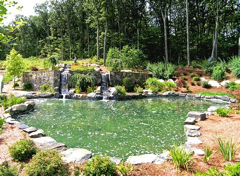 Aquascape Pools by Aquascape Pool Designs