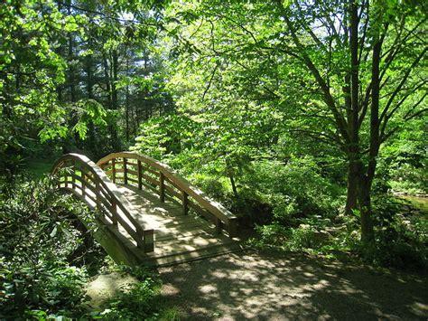 asheville botanical gardens gardens of our mountain region nc culture