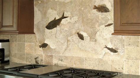 kitchen  bath kitchen backsplash  real fossils