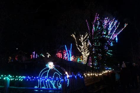 Hogle Zoo Lights by Zoo Lights At Hogle Zoo Salt Lake City Attractions Review