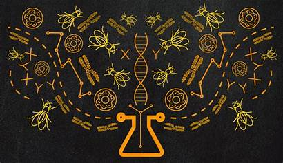 Science Lsa Research Biology Umich Podcast Background