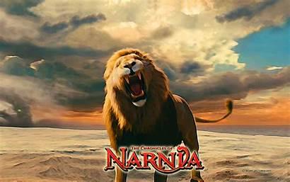 Aslan Narnia Chronicles Lion Asland Background Wardrobe