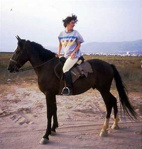 Primary Writing Lines A Definition Of Equitation Writing Of Riding