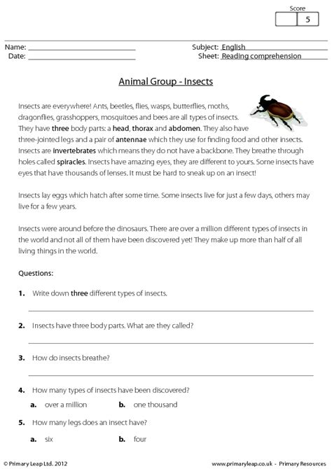 reading worksheet for 7 year olds breadandhearth