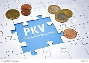 Legal Steuern Sparen : mit der pkv steuern sparen ~ Lizthompson.info Haus und Dekorationen