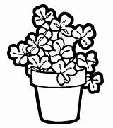 Coloring Plant Pages Printable Plants Flower Pot Shamrock Flowers Shamrocks Printables Potted Pots Parts Colouring Sheets Trees Designlooter Animation Comics sketch template