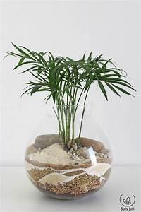 Terrarium Plante Deco : terrarium jardin de verre pour d co int rieure ~ Dode.kayakingforconservation.com Idées de Décoration