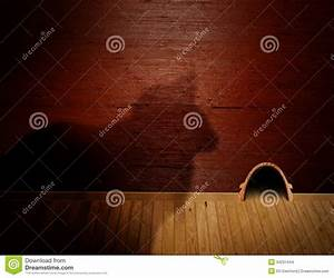 Cat and mouse stock images image 34231444 for Mice in between floors