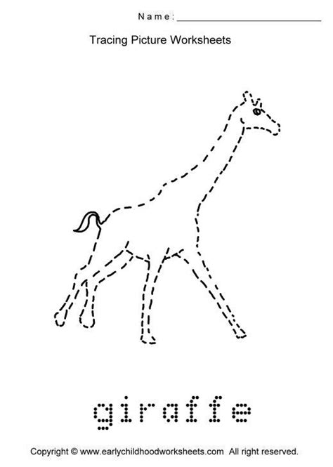 trace animals images   print  worksheet