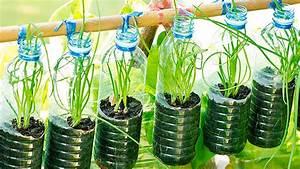 Pflanzen Bewässern Pet Flaschen : freizeit urban gardening den garten auf den balkon holen life channel ~ Whattoseeinmadrid.com Haus und Dekorationen