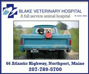 route 20 animal clinic vet offers free vet care for one day penbay pilot