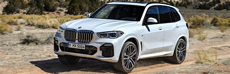 2019 Bmw Terrain White by How Much Does The 2019 Bmw X5 Cost