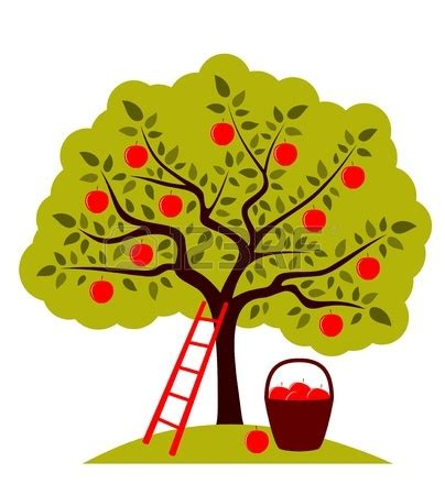 realistic apple tree drawing vector apple tree ladder and clipart panda free