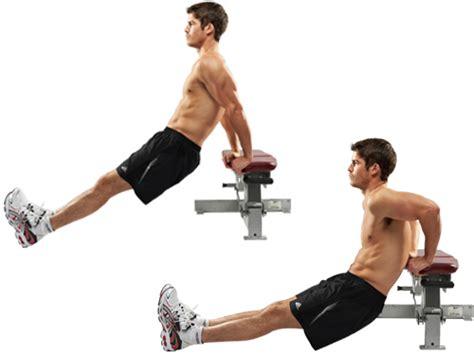 Dips Vs Pushups Fitness