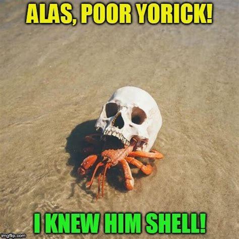 Crab Meme - crab imgflip