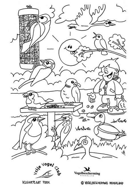 coloring page birds   park  printable coloring
