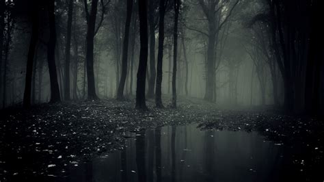 Background Scary by Scary Backgrounds 58 Images