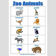 "Super ""zoo Animals"" Chart! Wwwloving2learncom  Early Learning  Pinterest  Zoos, Zoo Book"