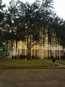 raining lightshow amazing would this look hanging from With lighting outdoor trees for xmas