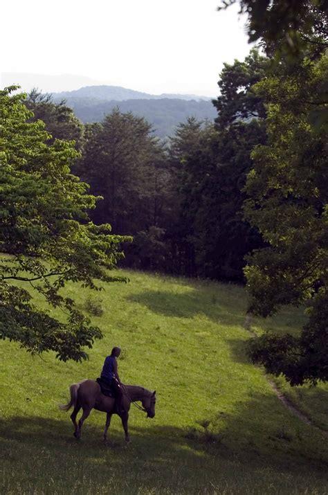 ridge riding horseback georgia ga trail ride north adventure mountains blueridgemountains cashes valley saddle county equestrian horses