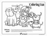 Dog Embarkvet sketch template