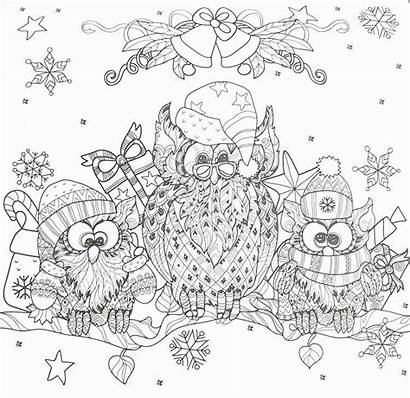 Coloring Winter Adult Adults Owl Sheets Doodle