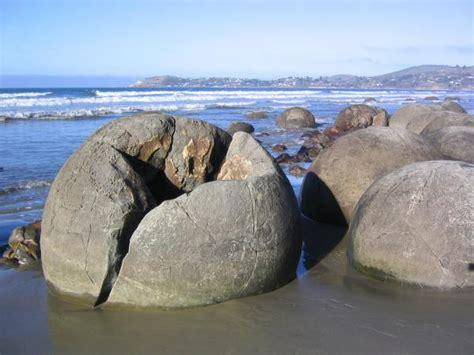 The Dinosaur Egg Boulders Of Moeraki