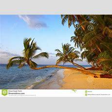 Fantastischer Sonnenuntergangstrand Mit Palmen Stockfoto