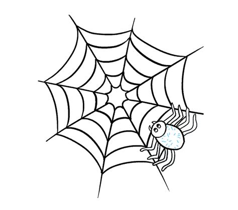 spider web drawing with spider how to draw how to draw a spider web with spider in a few