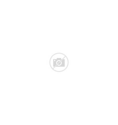 Animals Wild Circuses Animal Case