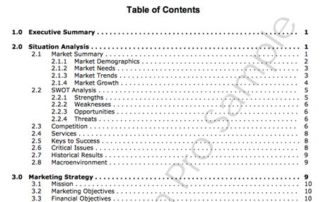 table of contents sle 30 marketing plan sles and everything you need to build