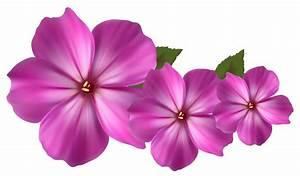 Flower Png Image - ClipArt Best