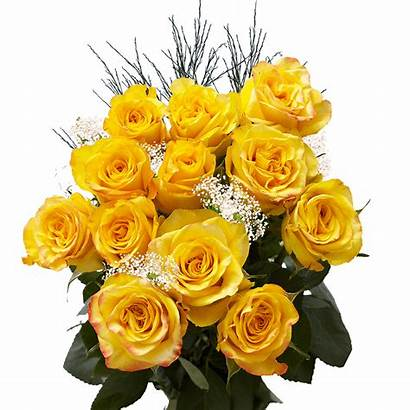 Roses Yellow Dozen Delivered Valentines Globalrose Guarantee