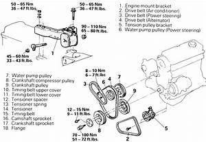 1990 Dodge Colt Engine Diagram  U2022 Downloaddescargar Com
