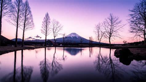 sleeping giants weeping plums japanese landscape