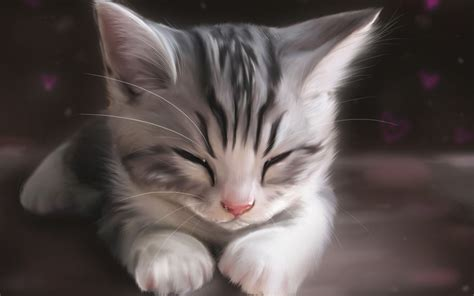 Anime Kitten Wallpaper - cat animals artwork drawing kittens sleeping