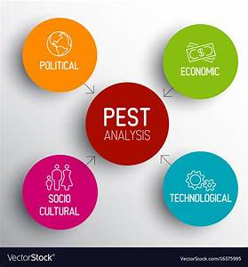 Pest Diagram Schema Royalty Free Vector Image