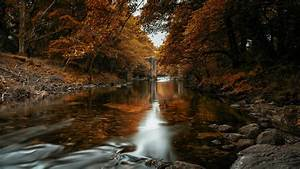 Fall, In, The, River, In, Autumn, Trees, Forest, 4k, Hd, Nature