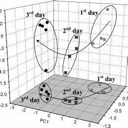 Score plot of the first two canonical variables of the ...