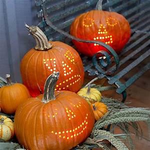 Pumpkins, U0026, Power, Drills, 10, Creative, Jack