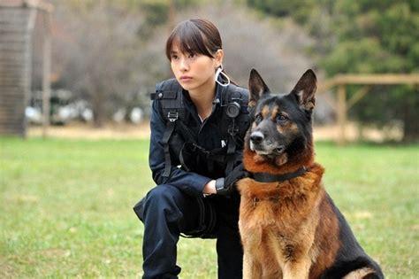 dog  police    force asianwiki