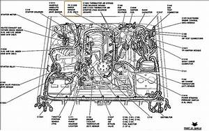 Diagram  1989 Ford F 150 5 0 Engine Diagram