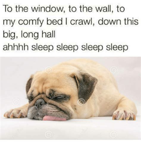 To The Window To The Wall Meme - to the window to the wall to my comfy bed i crawl down this big long hall ahhhh sleep sleep