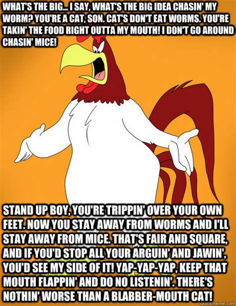 Foghorn Leghorn Meme - what s the big i say what s the big idea chasin my worm you re a cat son cat s don t eat
